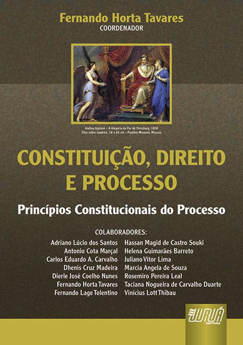 Constituição, Direito e Processo