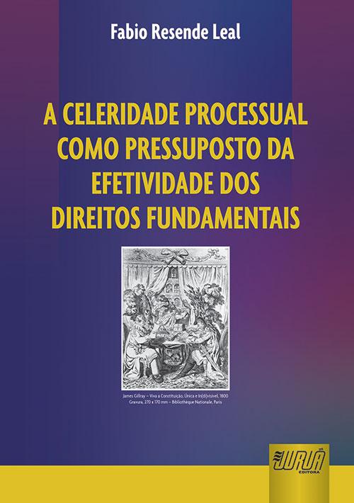 Celeridade Processual como Pressuposto da Efetividade dos Direitos Fundamentais
