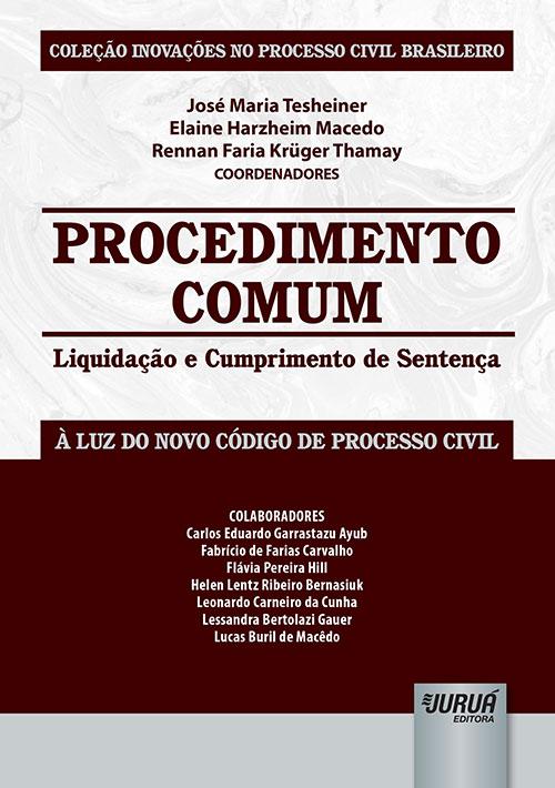 Procedimento Comum - Liquidação e Cumprimento de Sentença